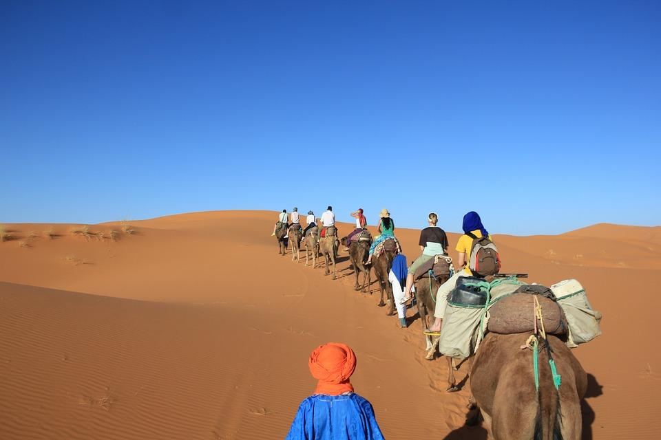 camels-2862066_960_720